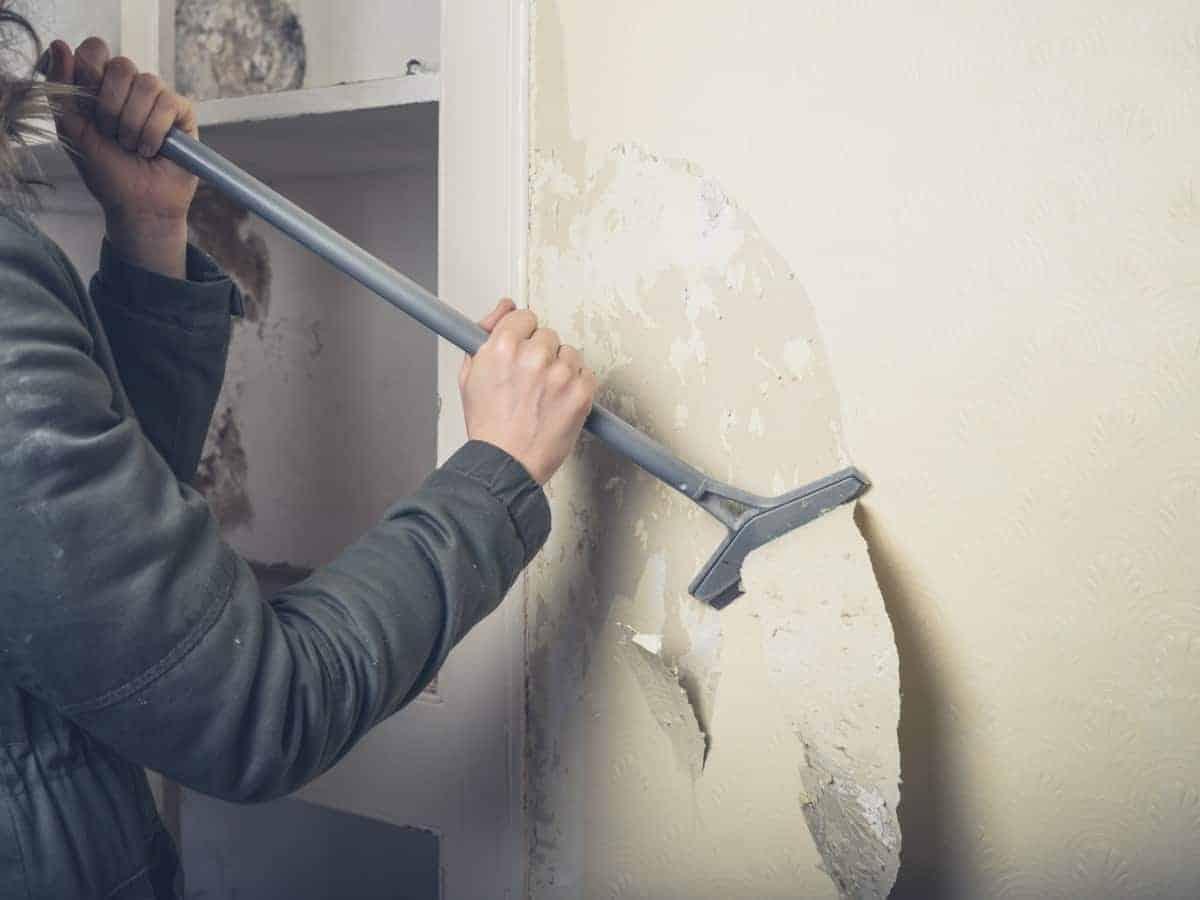 strip the wallpaper