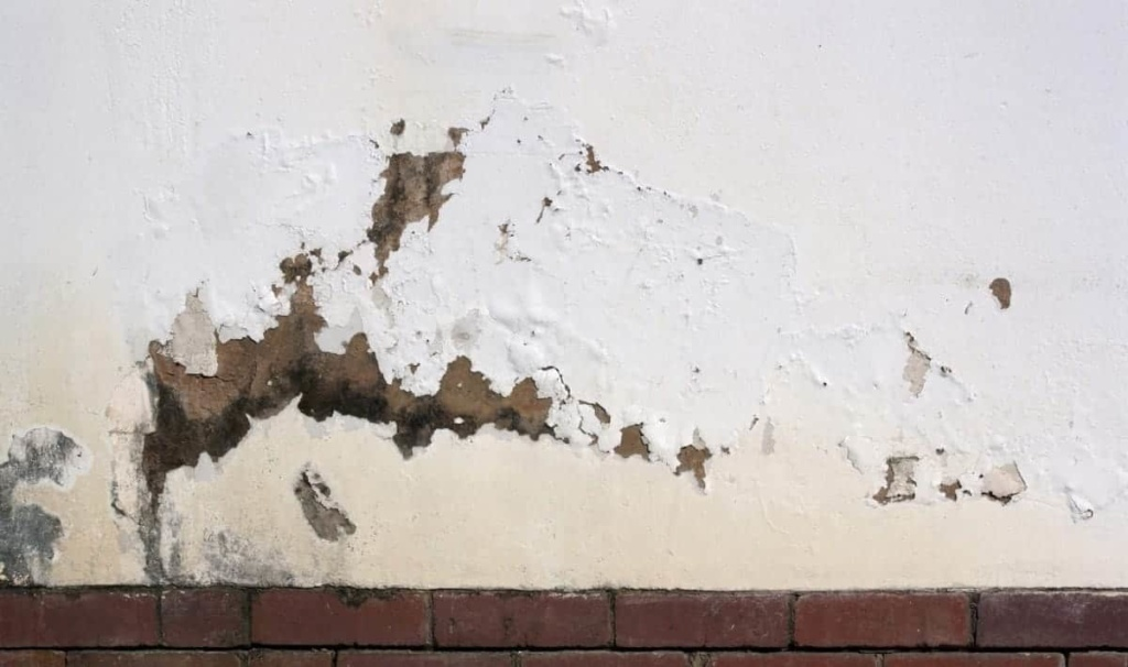 flaking paint on the exterior wall indicating rising damp