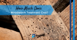 woodworm treatment cost