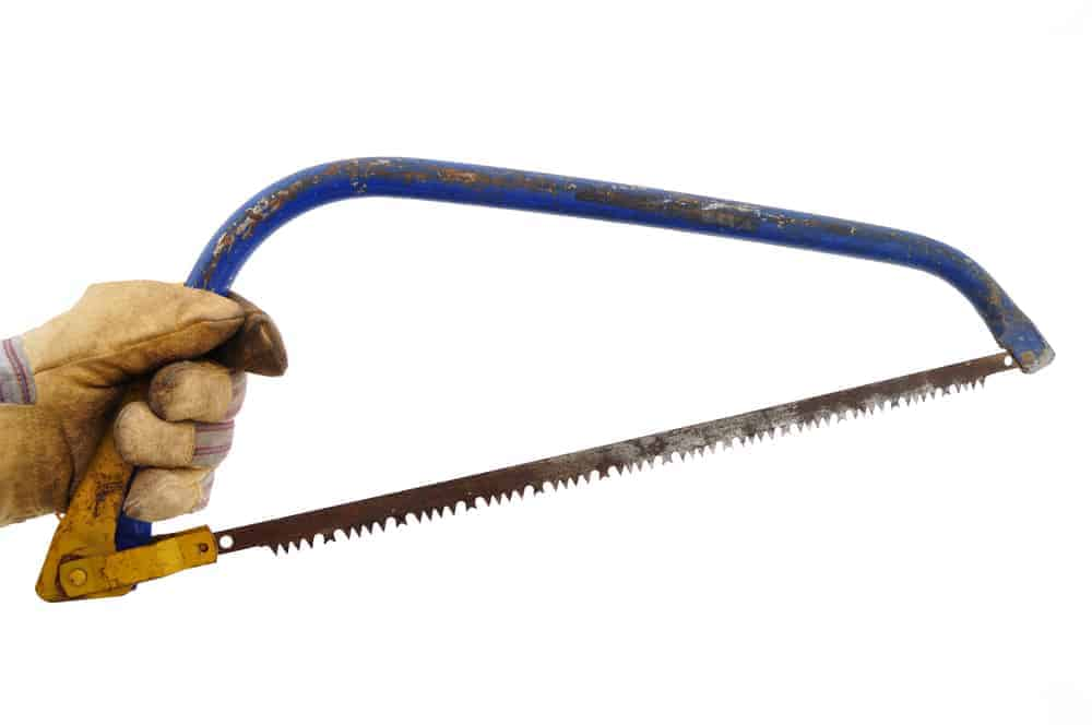 man holding bow saw