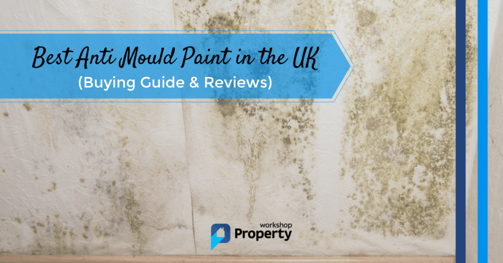 best anti mould paint