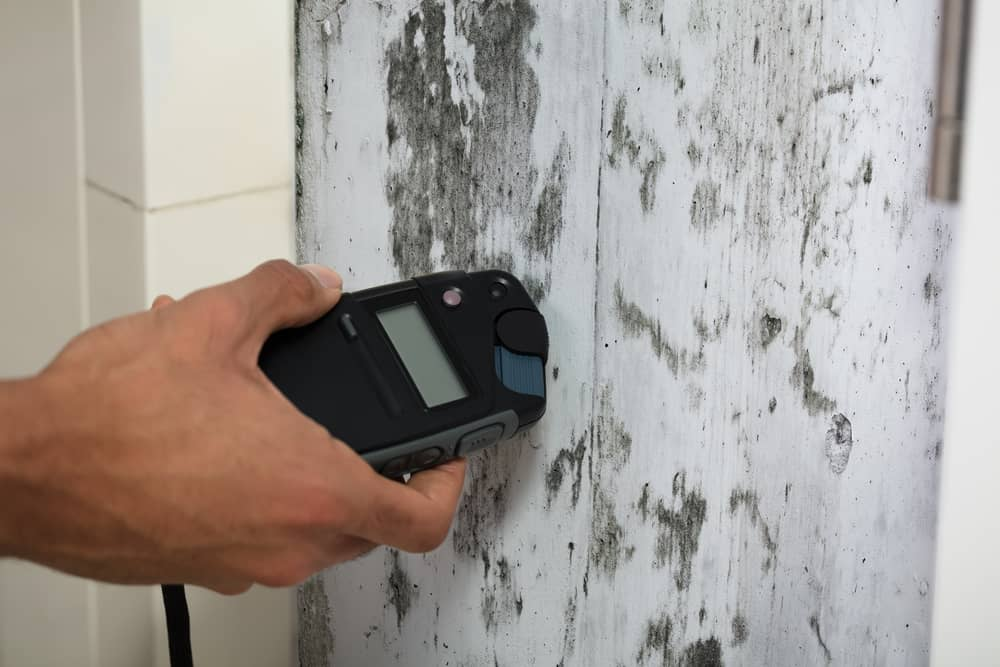 close up of a person's hand measuring wetness of mouldy white wall
